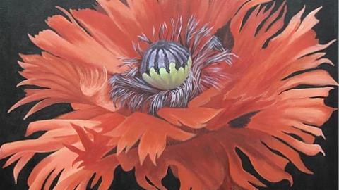 Atelier & exposition peinture