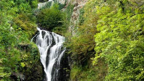 Cascade Sidonie