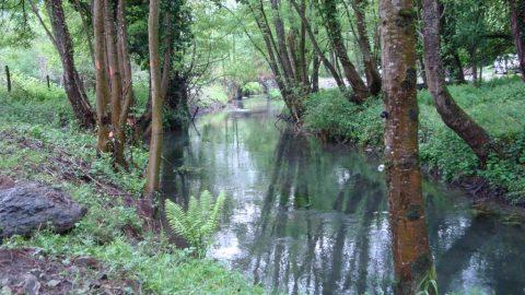 le-ruisseau-antignac-luchon